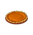 hand drawn pumpkin pie thanksgiving symbol food vector image