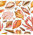 seamless pattern shells seaweed and mollusca vector image vector image