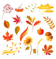 set stylized autumn items vector image vector image