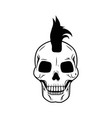 skull big image on isolated vector image