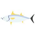 Sea fish tuna vector image
