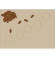 Coffee grains vector image
