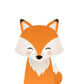 cute fox woodland forest animal vector image
