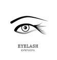 eye eyelash extensions vector image vector image