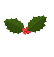 holly berry leaves and fruits christmas symbol vector image vector image