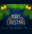 merry christmas caption greeting holiday postcard vector image vector image
