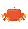 pumpkin icon image vector image vector image