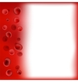 Red Blood Background vector image