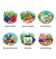 aquarium compositions set vector image vector image