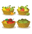 Baskets with fruits and vegetables vector image