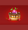 birthday cake with chocolare vector image vector image