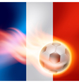 bw flag wave France vector image vector image