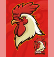 chicken head mascot for sports or university vector image vector image