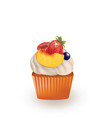 cupcake with white cream and fruits vector image vector image