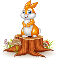 Cute bunny standing on tree stump vector image vector image