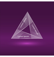 glass triangle infographic 4 vector image vector image