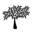 Natural tree symbol silhouette vector image