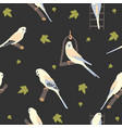 seamless hand drawn pattern with beautiful birds vector image vector image