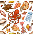 seamless pattern shells seaweed and octopus and vector image