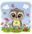 cute cartoon owl boy on a meadow vector image vector image