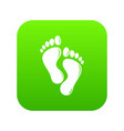 footprints icon green vector image