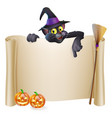 halloween witch cat scroll vector image vector image