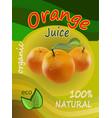 juice of oranges packaging vector image vector image