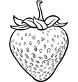 strawberry for coloring book vector image vector image