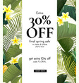 summer design with exotic banana palm vector image