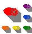 fruits lemon sign set of red orange yellow vector image
