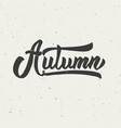 autumn hand drawn lettering phrase vector image