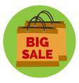 Big Sale Icon Flat style Isolated in colored vector image