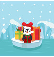 cute penguin with gift box vector image vector image