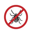 drawn mite in crossed out circle top view vector image