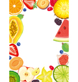 Fruit and Berries frame vector image vector image