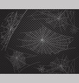halloween net ans spiders silhouettes vector image vector image