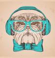 hipster animal bulldog hand drawing muzzle of vector image vector image