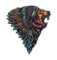 native american lion vector image