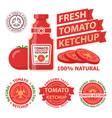 tomato ketchup badge emblems vector image vector image
