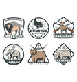 wild animals and birds safari hunting retro badges vector image vector image