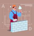 Cartoon builder laying brick wall hold spatula vector image
