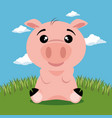 cute pig animal cartoon vector image