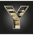 old stone letter y vector image