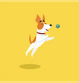 cute jack russell terrier playing with ball funny vector image