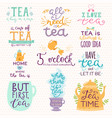 tea time lettering logo quote lettering vector image