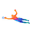 abstract football goalkeeper is jumping vector image vector image