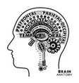 brain anatomy typographic artwork inspirational vector image vector image