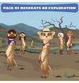 Cowboys meerkats on guard in the wild West vector image vector image