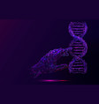 genetic analysis and research purple vector image vector image