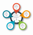 infographic circle diagram template with 5 options vector image